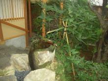 wasyoku11.jpg